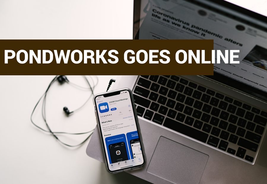 telemedicine virtual mental health now offered at Pondworks in Austin Texas
